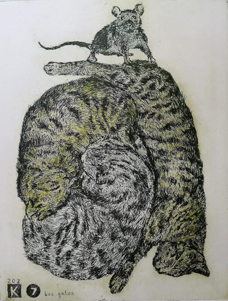 Koty śpią, mysz harcuje