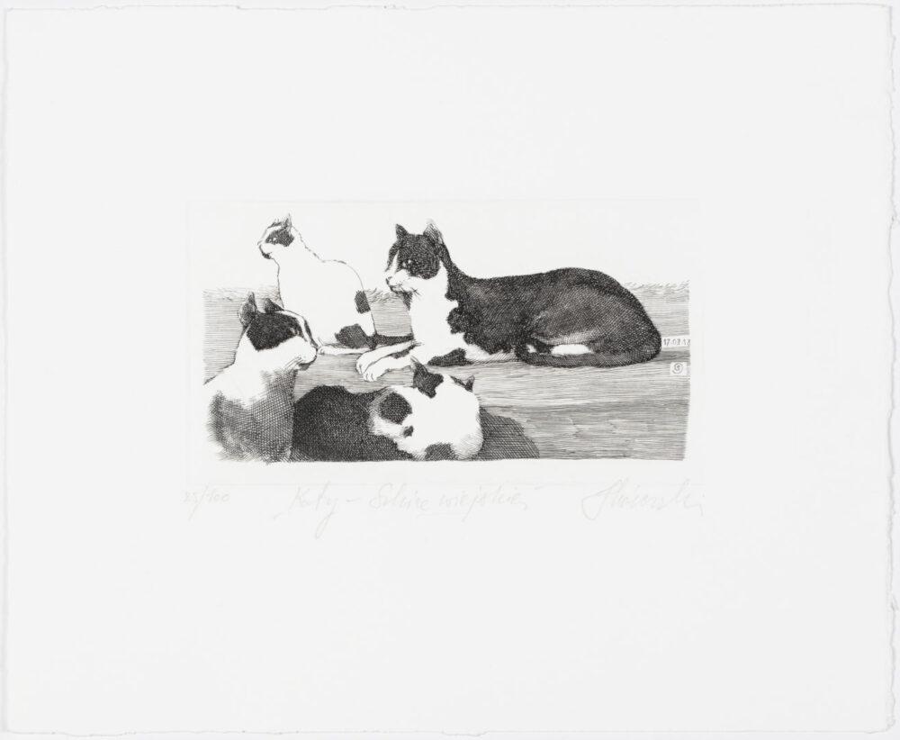 Koty - szkice wiejskie