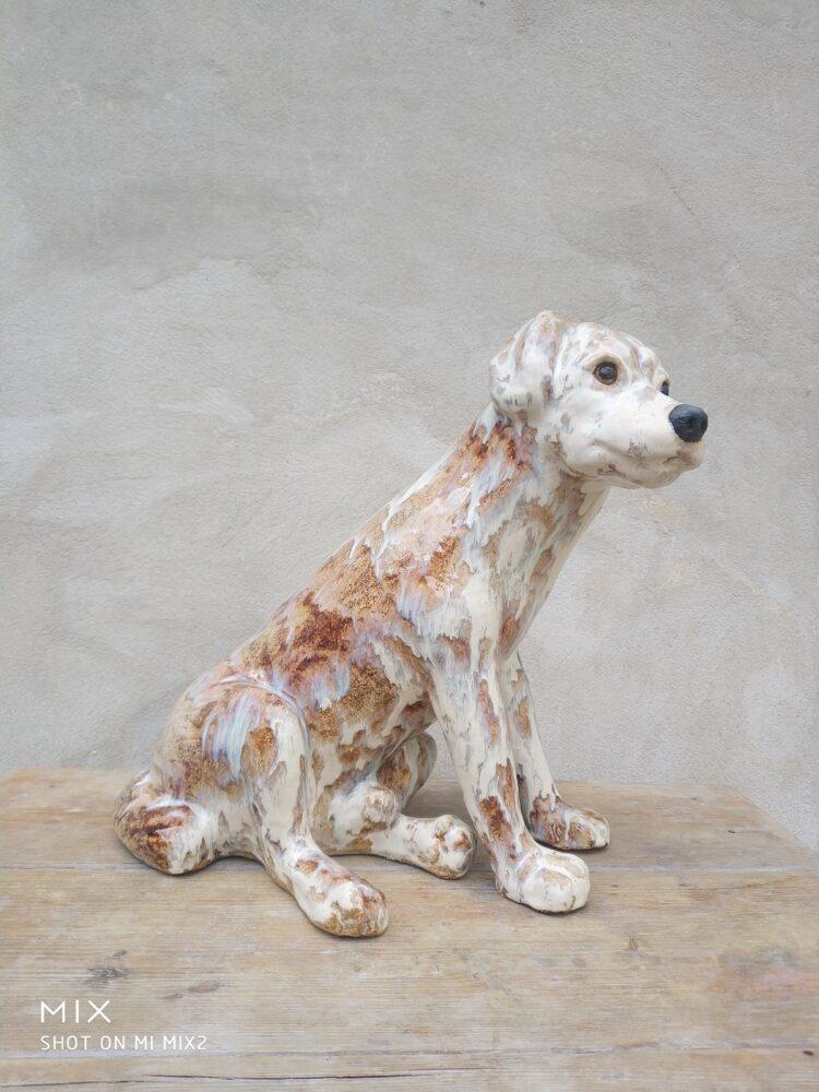 Siedzący pies