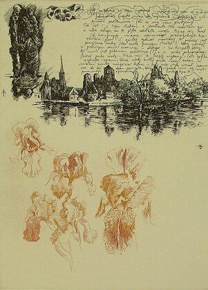 Irysy (list z Wrocławia)