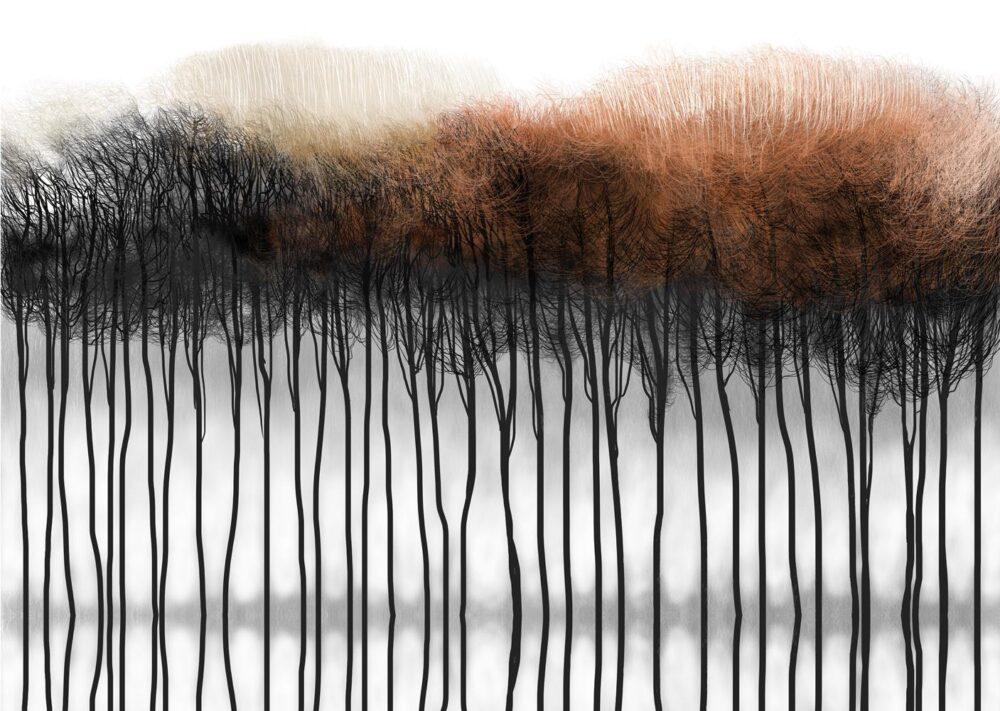 Drzewa (rudy las)